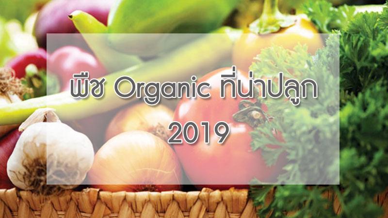 พืช organic ที่น่าปลูก 2019